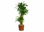 """62"""" Dracena with Basket Silk Plant in Green - Nearly Natural - 6584-0508"""
