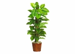 """63"""" Large Leaf Philodendron Silk Plant in Green - Nearly Natural - 6594-0508"""