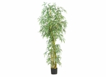 7' Curved Slim Bamboo Silk Tree in Green - Nearly Natural - 5194
