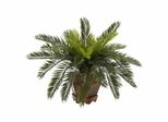 Cycas with Hexagon Vase Silk Plant - Nearly Natural - 6657