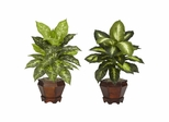 Dieffenbachia with Wood Vase Silk Plant (Set of 2) - Nearly Natural - 6712-AS-S2
