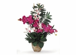 Double Phal / Dendrobium Silk Flower Arrangement in Beauty / White - Nearly Natural - 1071-BW