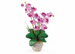 Double Phalaenopsis Silk Orchid Flower Arrangement in Mauve - Nearly Natural - 1026-MA