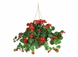 Geranium Hanging Basket Silk Plant in Red - Nearly Natural - 6609-RD