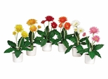 Gerber Daisy with White Vase (Set of 6) in Mixed - Nearly Natural - 4600