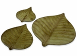 Hoja Decorative Plates (Set of 3) - IMAX - 94073-3