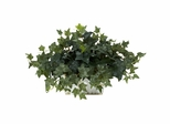 Ivy with White Wash Planter Silk Plant - Nearly Natural - 6715