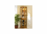 Lighted Curio Cabinet - Holly and Martin