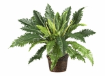 Marginatum with Wicker Basket Silk Plant in Green - Nearly Natural - 6534