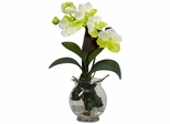 Mini Vanda with Fluted Vase Silk Flower Arrangement - Nearly Natural - 1276-WH