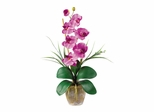 Phalaenopsis Silk Orchid Flower Arrangement in Mauve - Nearly Natural - 1016-MA