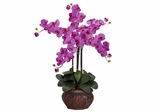 Phalaenopsis with Decorative Vase Silk Flower Arrangement - Nearly Natural - 1211-OR