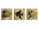 Pisces Capiz Wall Plaques (Set of 3) - IMAX - 12652-3