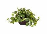 Pothos with Decorative Vase Silk Plant - Nearly Natural - 6681