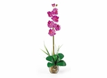 Single Phalaenopsis Liquid Illusion Silk Flower Arrangement in Orchid - Nearly Natural - 1104-OR