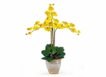 Triple Phalaenopsis Silk Orchid Flower Arrangement in Yellow - Nearly Natural - 1017-GY