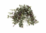 Wandering Jew with Metal Planter Silk Plant - Nearly Natural - 6697