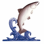 """Whitehall  Rooftop or Garden  30"""" Trout Weathervanes"""