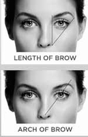 Touch Back Long Lasting Color For Brows