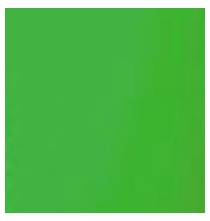 American 8x8 Chroma Key Green Screen  BF328