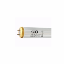 Kino Flo 2ft. Tungsten 3200K T12  Lamp (6) Pack  (Non- Safety Coated)