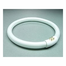 "Kino Flo 6"" Kamio Ring Tube Daylight 5500K   06C-K55"