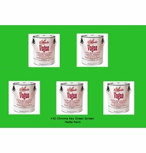 Muralo Vogue 42 Chroma Key Green Screen Paint 5 Gallons