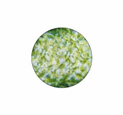 Rosco Green Yellow Featherlight Colorizer Glass Gobo Pattern B Size