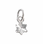 Sterling Silver Small Diamond Cut Star Charm