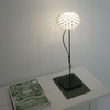 Freedom of Creation Palm Table Lamp