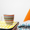 iittala Origo Orange Mug with Handle