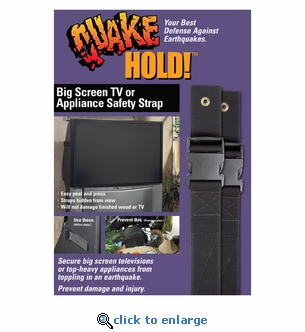 Quakehold! 4508 Big Screen & Appliance Strap