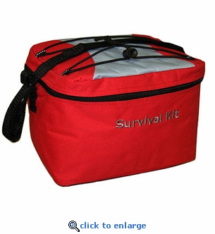Red Large Cooler Bag - 10 x 6 x 6
