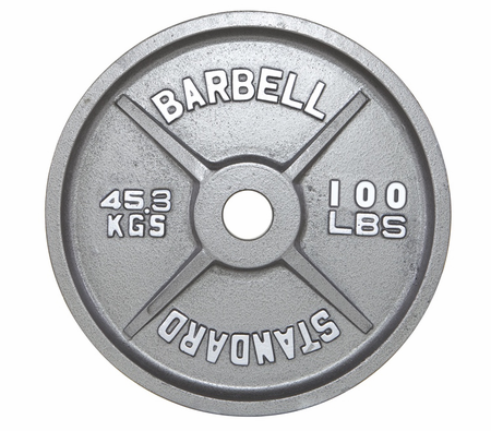 100lb Gray Olympic Weight Plate Pair