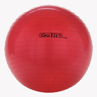 55cm GoFit Core Stability Ball