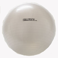 65cm GoFit Core Stability Ball