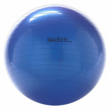 75cm GoFit Core Stability Ball