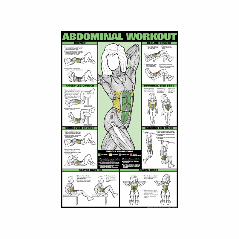 ABDOMINAL EXERCISES Fitness Wall Chart Abs Poster - ebay.com