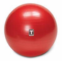 Body Solid BSTSB 65cm Stability Ball $39.99