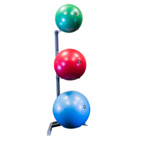 Body Solid GSR10 Stability Ball Storage Rack $159.99