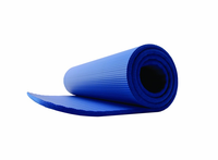 GoFit Stretching / Pilates Mat