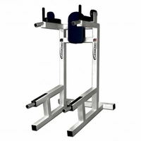 Legend Fitness Dip / Ab / Pushup  Machine 3113 $1,069.99