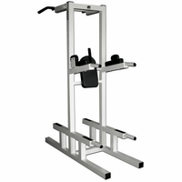 Legend Fitness Dip / Chin / Ab 3153 $1,199.99