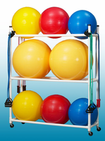 Stability Ball Caddy $239.00