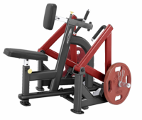 Steelflex PLSR1700 Leverage Seated Row Machine $1,149.00