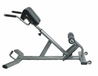 Tag Fitness BNCH-HYP 45 Degree Hyperextension $659.99