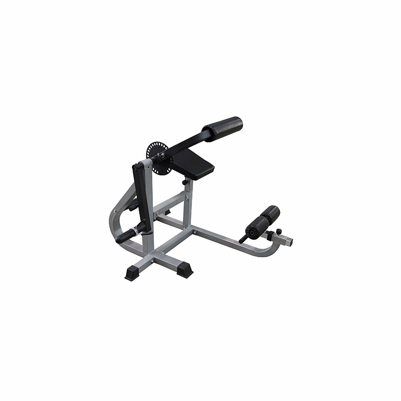 ab and back exercise machine