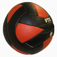 VTX 16lb Leather Wall Ball $89.99