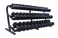 VTX 3-100lb Rubber Coated Dumbbells With Rack $3,999.00