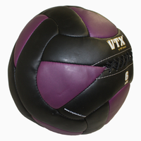 VTX 6lb Leather Wall Ball $59.99